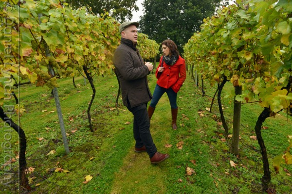 METRO FEATURES : GREAT BRITISH WINE